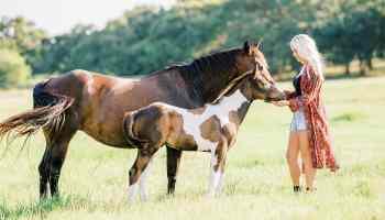 Cowgirl in conversation Erin Bradshaw Weiss cowgirl magazine