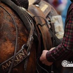 Martin Saddlery Tack