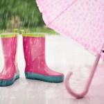 Zdobądź dotację i korzystaj z deszczówki
