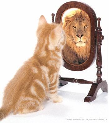 Pessoas Orgulhosas ou Arrogantes (Entenda as diferenças)