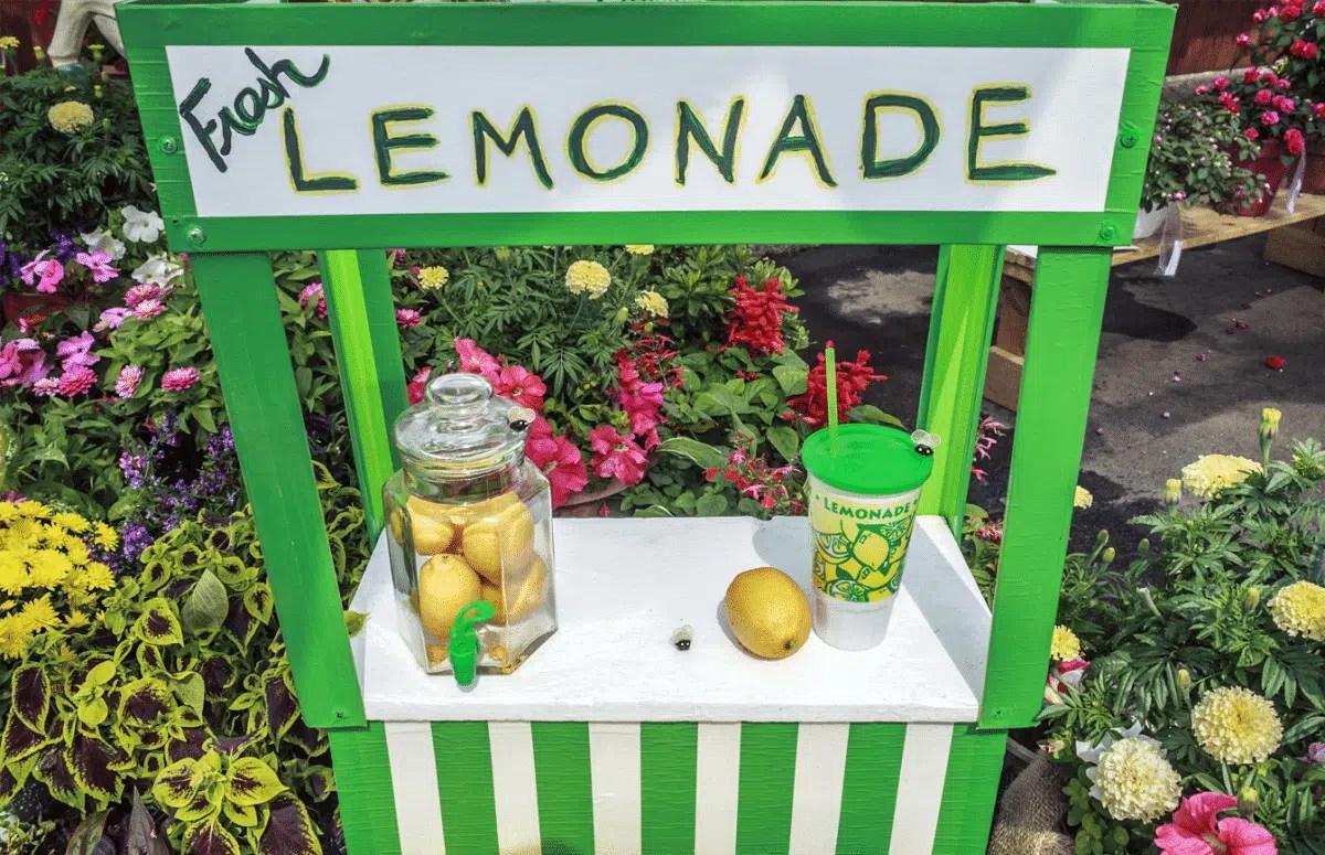 Economia 101 com a barraquinha de limonada