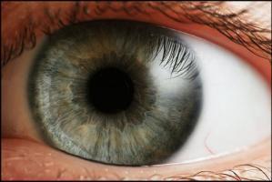 Se Os Olhos São O Espelho da Alma, O Que Dizer das Pupilas?