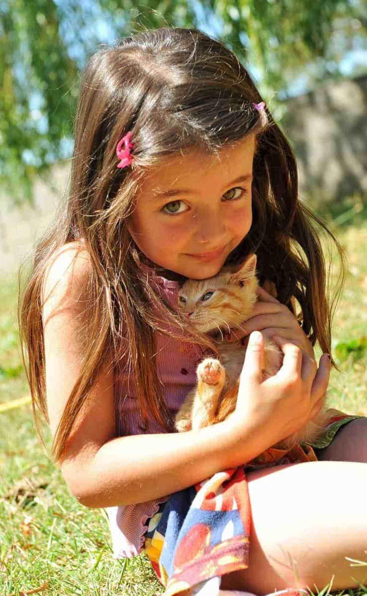 Jak dbać o kotkę i kociaki?