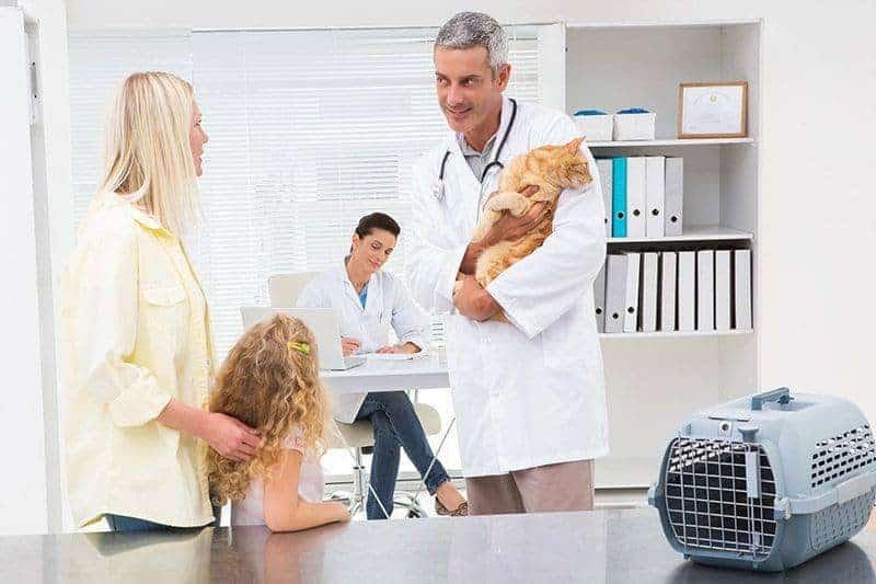 Chorobom wątroby można zapobiegać!