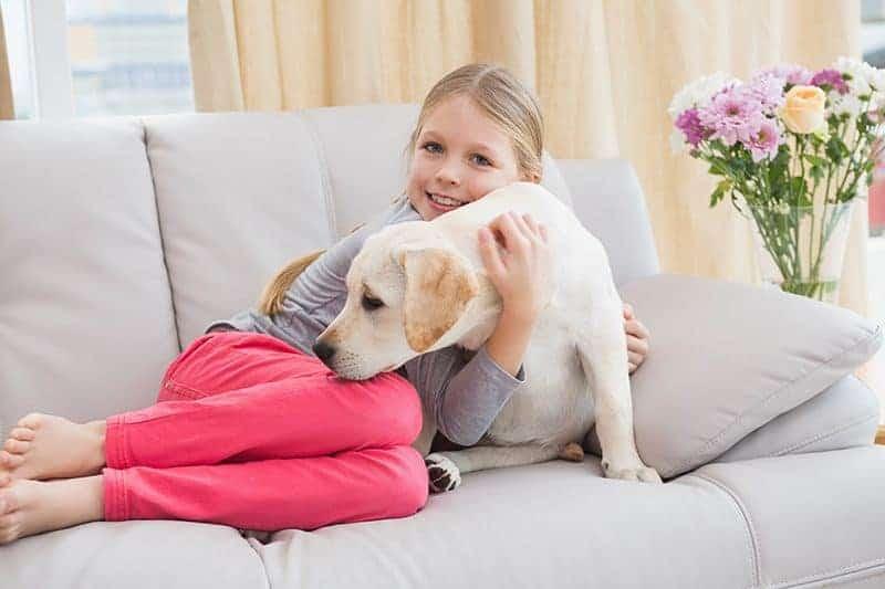 Czy warto wychowywać dziecko z psem?