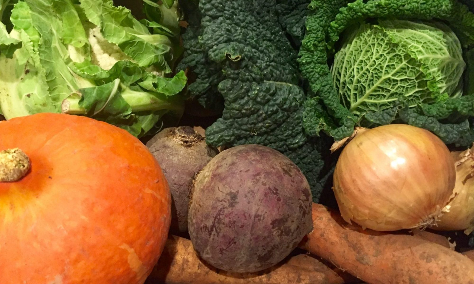 Photo of vegetables including pumpkin onion cabbage swede for weightloss weight help