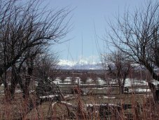 La Plata Mountains from the Great Sage Plain with historical Montezuma County apple orchard in the foreground.