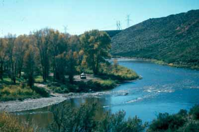 Yampa River near Hayden