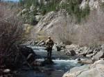 Ten Mile Creek via ColoradoFishing.net
