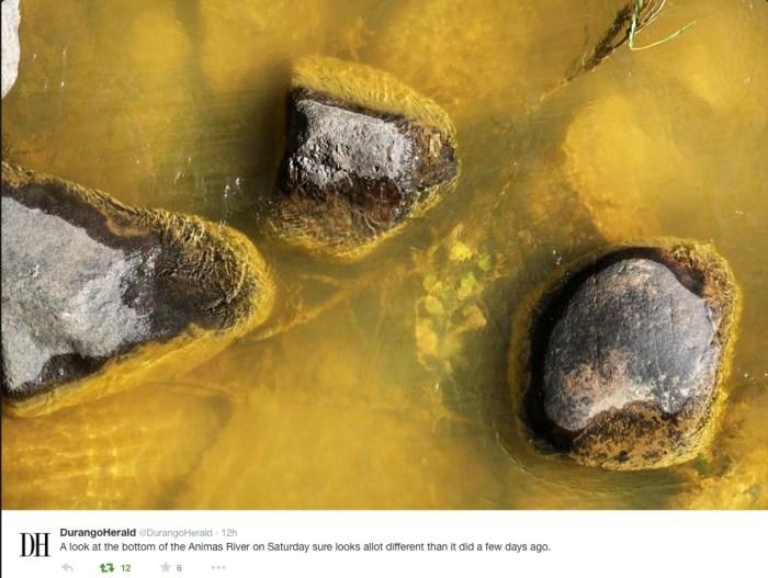 Bottom of Animas River at Durango August 8, 2015 via Twitter and The Durango Herald