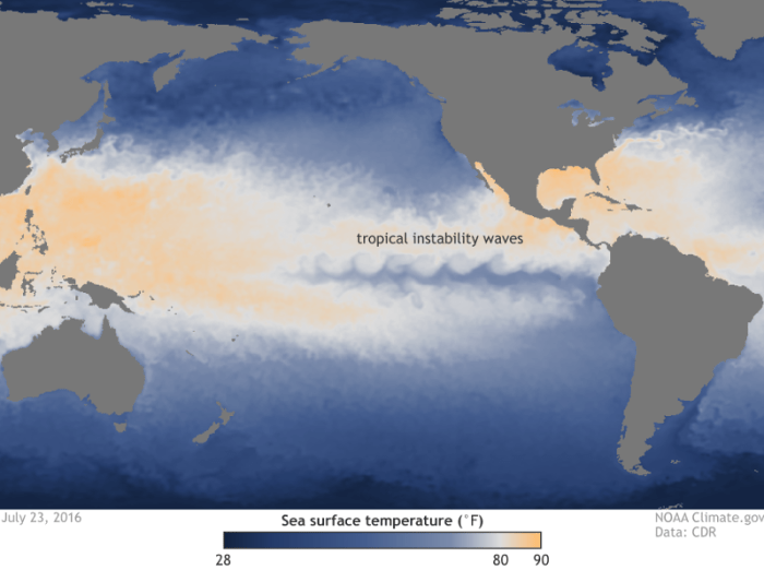 Sea surface temperature on July 23, 2016. The eastern Pacific cold tongue is clearly visible along the Equator, surrounded by warmer waters to the north and south. The wavy features along the northern and southern borders between the cold tongue and the warmer waters are tropical instability waves. The waves on the north side are clearer in part due to the stronger temperature gradient on that side of the cold tongue. Map by NOAA Climate.gov from CDR data.