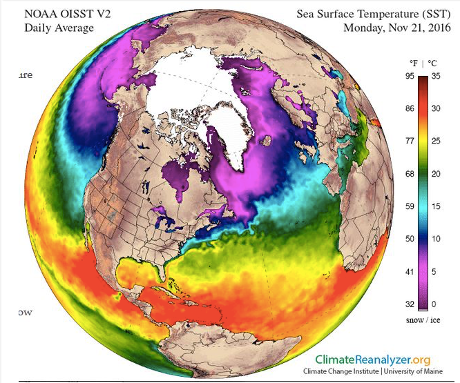 Sea surface temperatures are unusually high and well above freezing in some areas of the Arctic, contributing to ice melt. Credit: Climate Change Institute