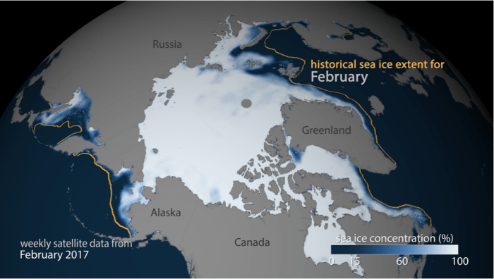 Arctic sea-ice concentration for the week ending February 12, 2017. The gold line shows the historic median extent for the month, showing how far behind this year's ice cover is. Map image based on NASA and NOAA satellite data provided by NSIDC. Check out this animation of weekly Arctic sea-ice concentration from Sep. 6, 2016, through Feb. 12, 2017, which shows how sluggish ice growth has been this winter. (NOAA/climate.gov)