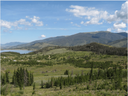 A scene in Summit County, between Farmers' Corner and Summit Cove, overlooking Dillon Reservoir, both pre-treatment and afterward.