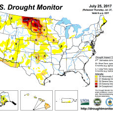 US Drought Monitor July 25, 2017.