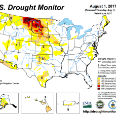 US Drought Monitor August 1, 2017.