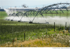 Irrigation sprinklers run over a farm in Longmont in the South Platte River basin. Photo credit: Lindsay Fendt/Aspen Journalism