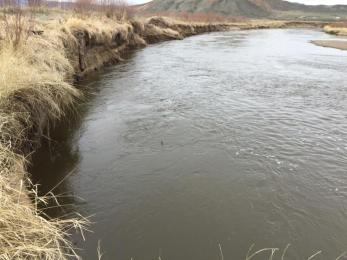 Banks erosion along the Colorado River near Kremmling, Colorado, affected the ability of irrigators to convey water through ditches. (Source: Paul Bruchez)