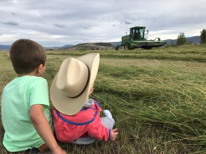 Rancher and fly fishing guide Paul Bruchez's daughter and nephew sit in a hay field at the family ranch near Kremmling. Bruchez is helping spearhead a study among local ranchers, which could inform a potential statewide demand management program. Photo credit: Paul Bruchez via Aspen Journalism