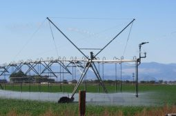 A center pivot irrigates a field in the San Luis Valley, where the state is warming farmers that a well shut-down could come much sooner than expected. Credit: Jerd Smith via Water Education Colorado