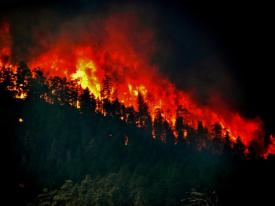 A forest burns during the High Park Fire West of Fort Collins in 2012. Photo credit: University of Colorado