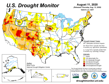 US Drought Monitor August 11, 2020.