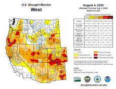 West Drought Monitor August 4, 2020.