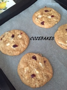 cranberrycookiesgfnamed