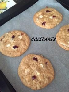 cranberrycookiesgfnamed