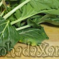 Os legumes - A couve portuguesa (como preparar)