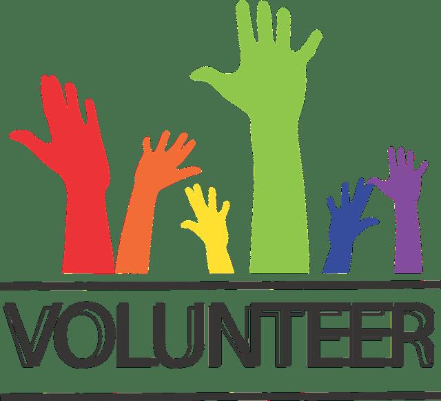 Cozumel My Cozumel volunteering image