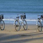 Cozumel My Cozumel bike rental