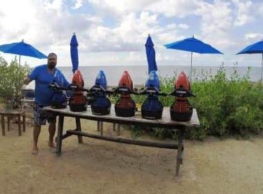 Cozumel My Cozumel Go Tour Power Snorkeling