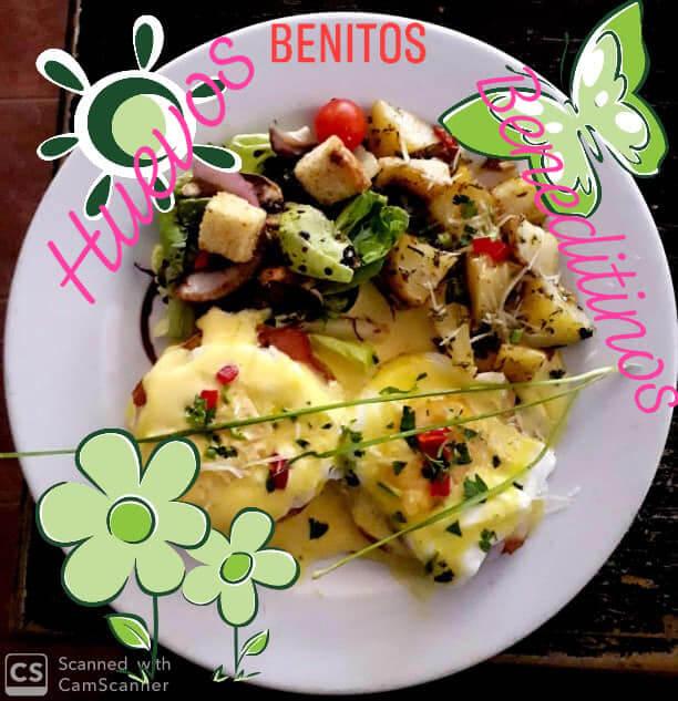 Cozumel My Cozumel Benitos Eggs Benedict