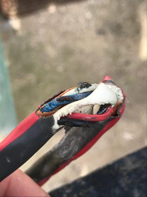 Libra II Electrical