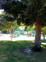 small play ground for little ones