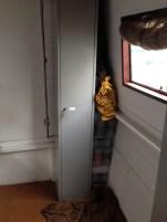 Small Space Closet, Minimal Closet, Tiny Closet, Simplicity, Clothes, Tiny House, Tiny Space