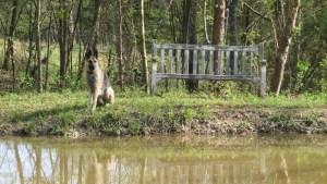Adams County Cozy Hideaway Pond