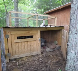 Cozy Hideaway Hens and Pig