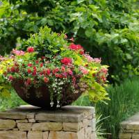 220 Eye Catching Front Yard Landscaping Ideas and Tips