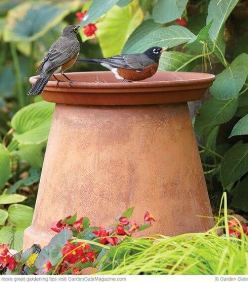 Easy Bird Bath Ideas  Tips