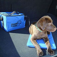 Cooling Dog Products & Pet Accessories | CozyWinters