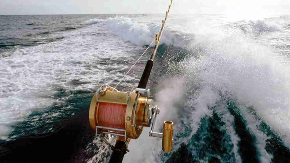 Intenção de pesca no período de defeso não é crime