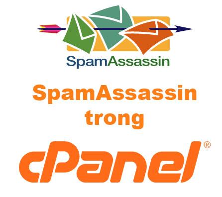 Cách chặn email spam với Apache SpamAssassin của cPanel