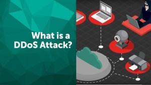 DDOS Là Gì? Các Hình Thức Tấn Công DDOS Và Cách Phòng Tránh