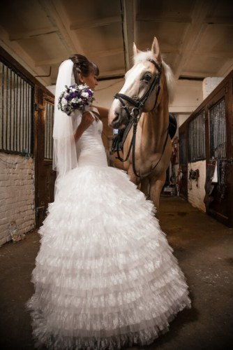 Beautiful bride holding horse by rein