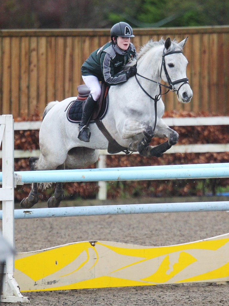 Mikey Has A Great Weekend Competing Connemara Ponies