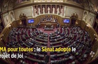 PMA pour toutes : le projet de loi bioéthique voté de justesse au Sénat