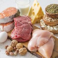 necesidades nutricionales optimas en el embarazo