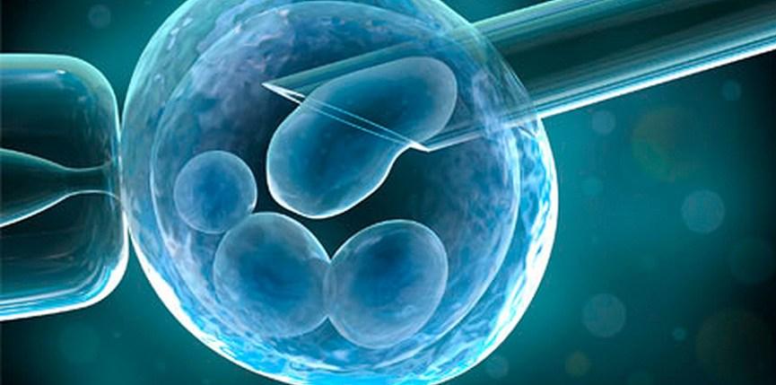 Los mejores tratamientos de fertilidad
